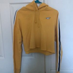 hollister cropped hoodie